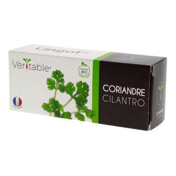 Recharge coriandre bio - Véritable