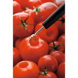 Equeteur à tomates - Triangle